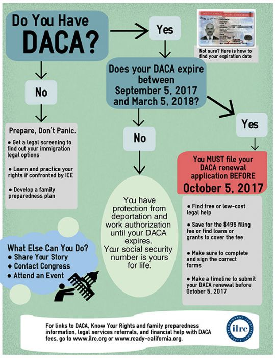 DACA infographic
