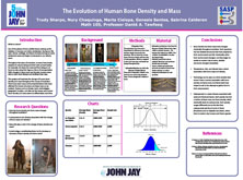 The Evolution of Human Bone Desity and Mass