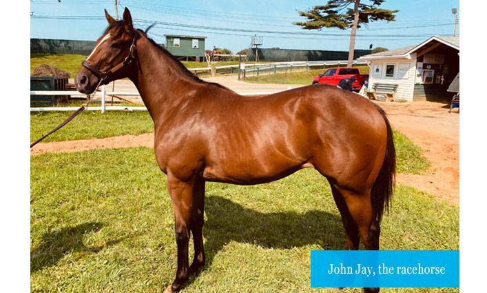 Racehorse Named John Jay to Help Raise Funds for College's Food Pantry