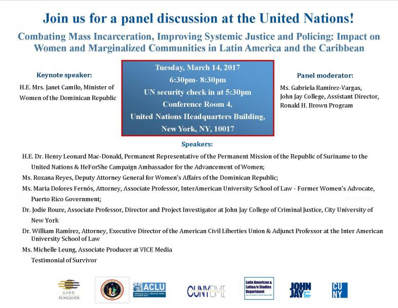 Panel discussion at the United Nations