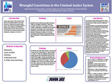 Wrongful Convictions in the Criminal Justice System