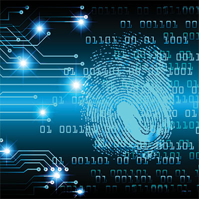 Master Of Science In Digital Forensics And Cybersecurity